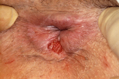Bibi jones anal