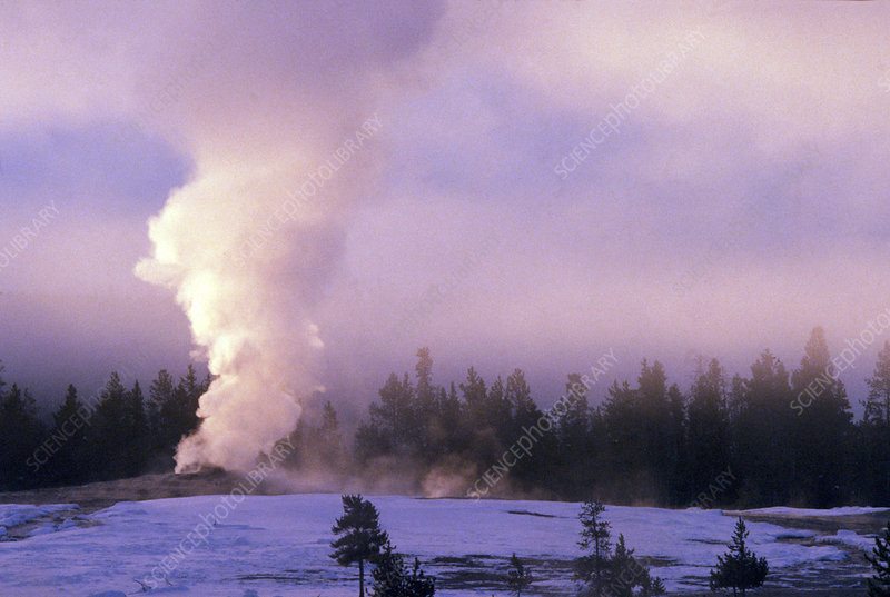 Old Faithful, Yellowstone NP