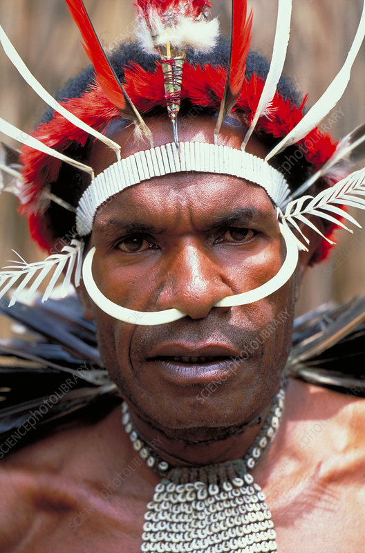 Man of the Dani tribe. Irian Jaya, Indone
