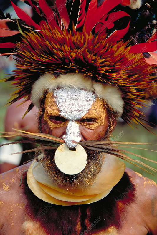 Man of the Mt. Hagen tribe. Papua, New Gu
