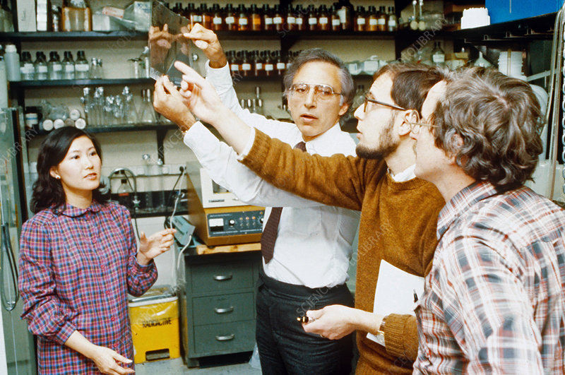 Robert C. Gallo and Colleagues