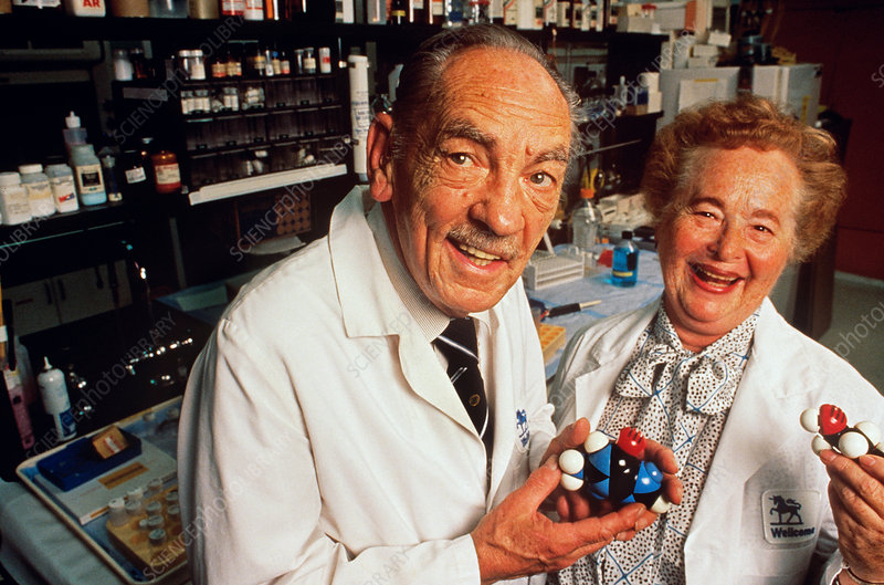 George Hitchings & Gertrude Elion 1988 No