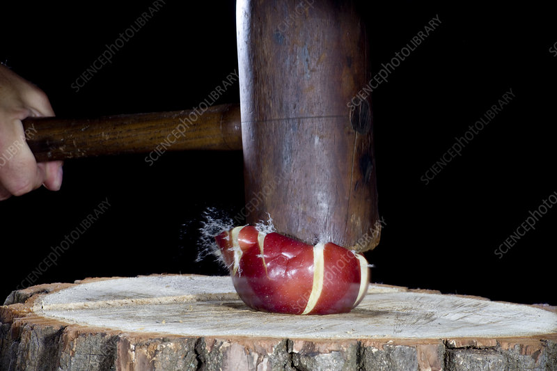 Apple Smashed With Mallet