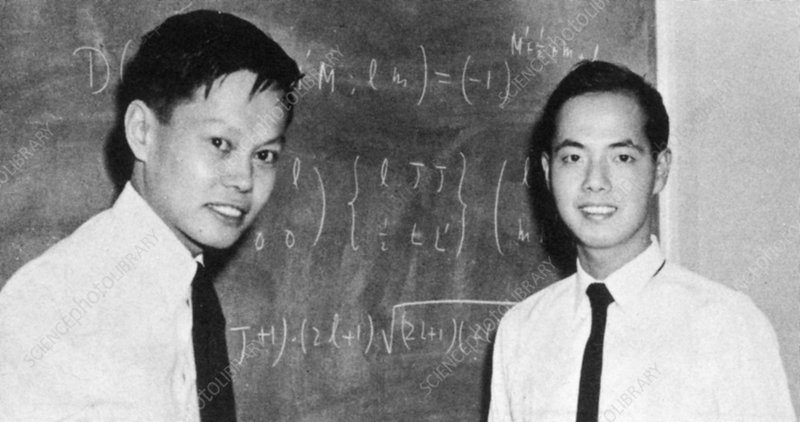 C.N. Yang and Tsung-Dao Lee