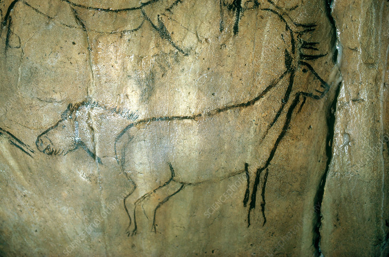 Cave Painting, Niaux, France