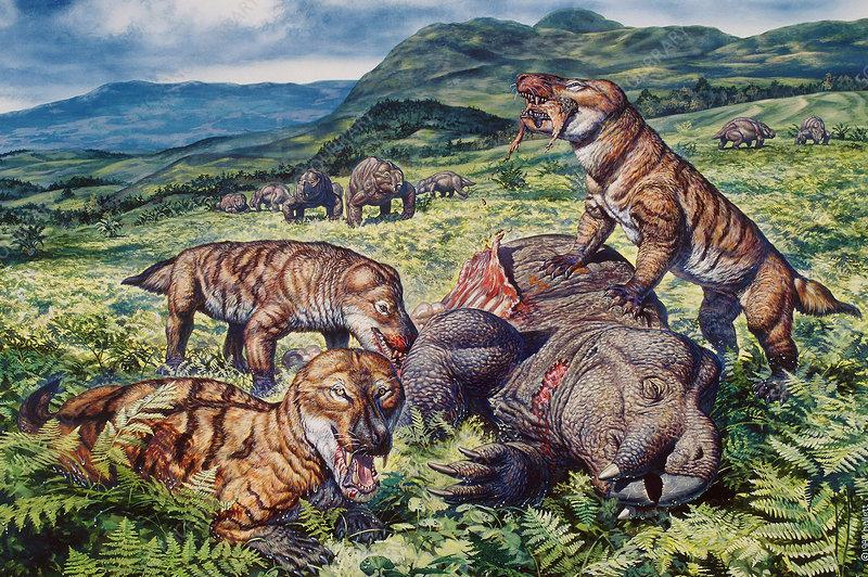 http://www.sciencephoto.com/image/112260/530wm/C0048049-Mammal-Like_Reptiles-SPL.jpg