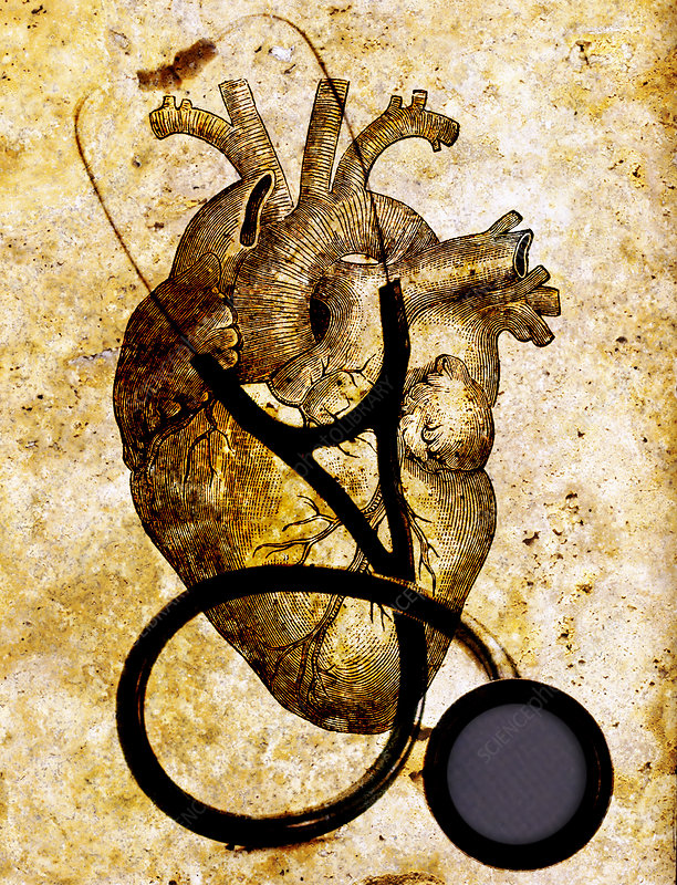 Heart & Stethoscope Illustration