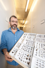 Brian Fisher, US entomologist