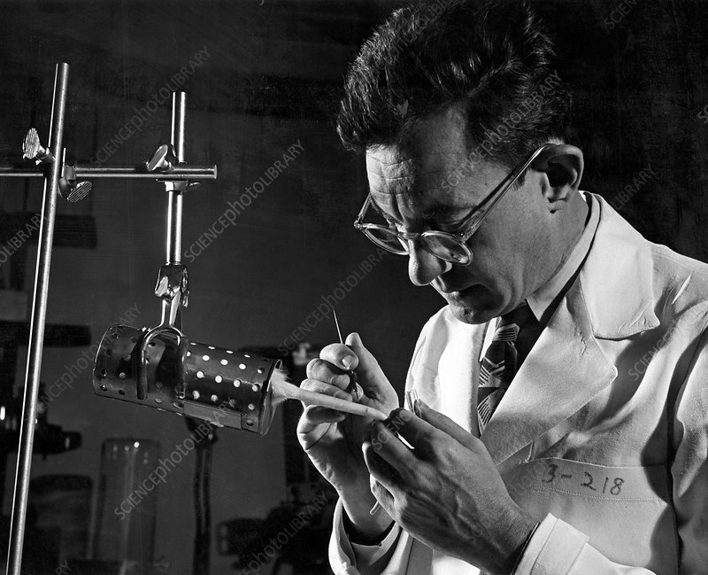 Julius Axelrod, US biochemist