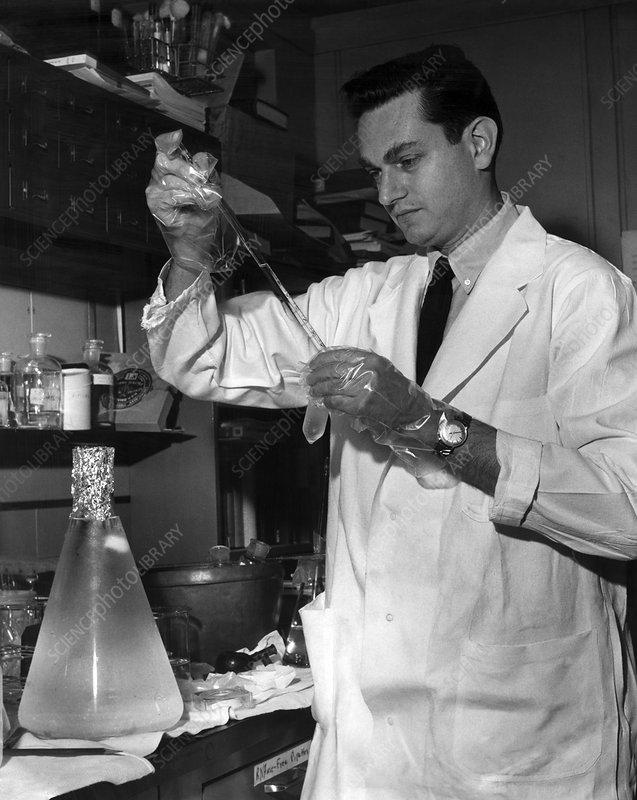 Marshall Nirenberg, US biochemist
