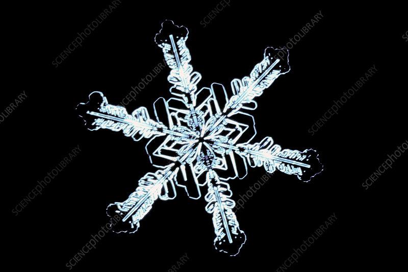 Stellar snow crystal LM
