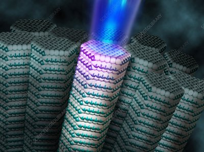 Nanowire laser, artwork