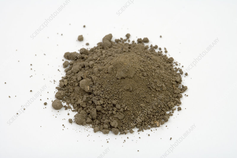 Loam soil stock image c005 5827 science photo library for Soil library