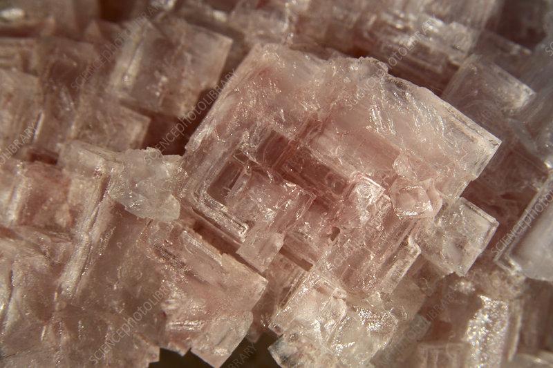 Halite cubic crystals