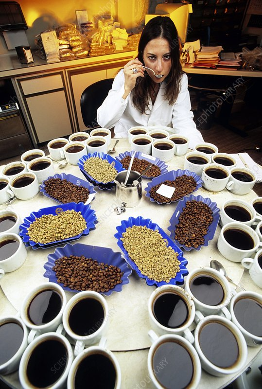 Coffee research
