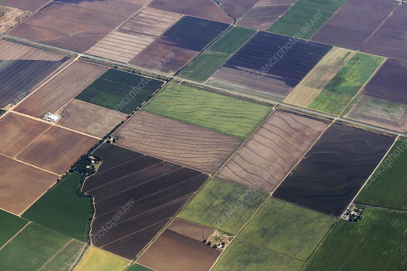 Contoured farm fields, fallow, crops