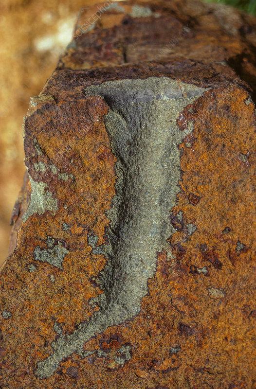 Weathering of greywacke, oxidation