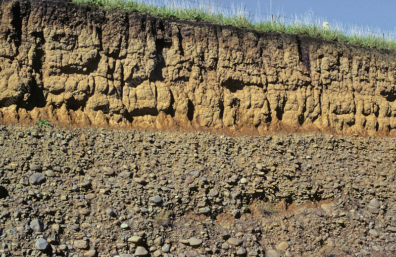 Soil profile of the Awatere River Terrace