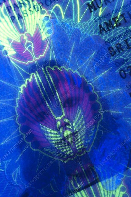 Passport in UV light