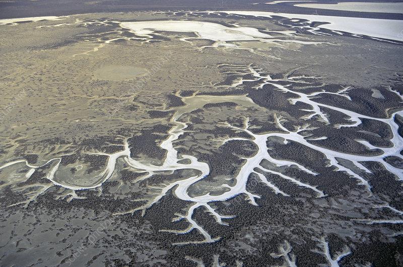 Soda Lake, Carrizo Plain Natural Area
