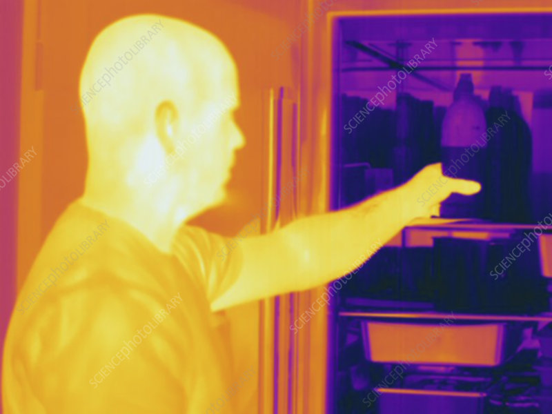 Thermogram male reaches into refrigerator