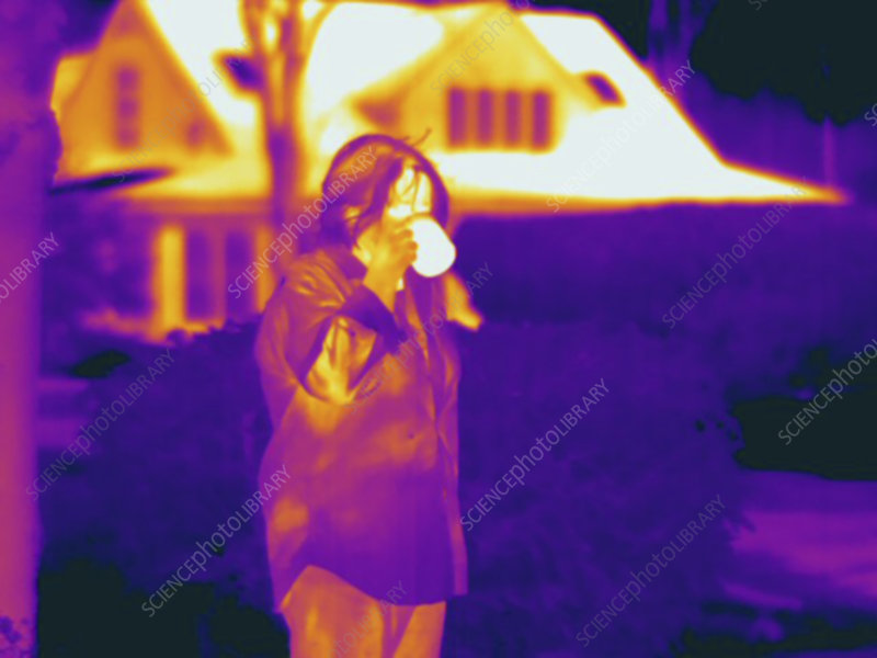 Thermogram, woman drinking hot beverage