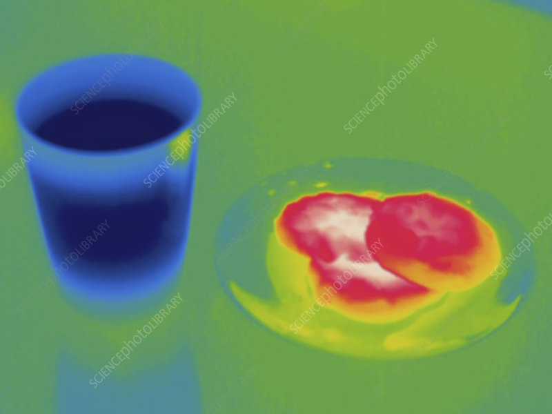 Thermogram of warm cookies and cold milk