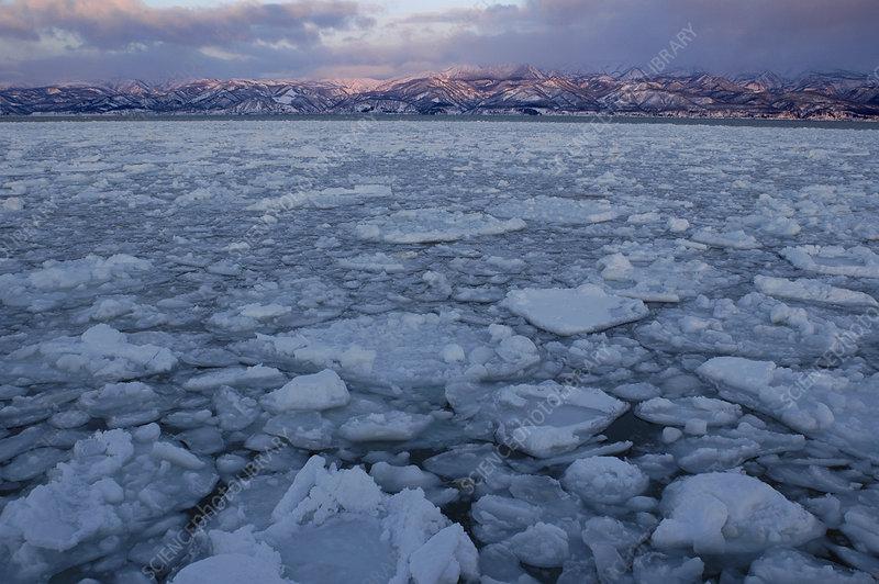 Winter Sea Ice off Hokkaido Island, Japan