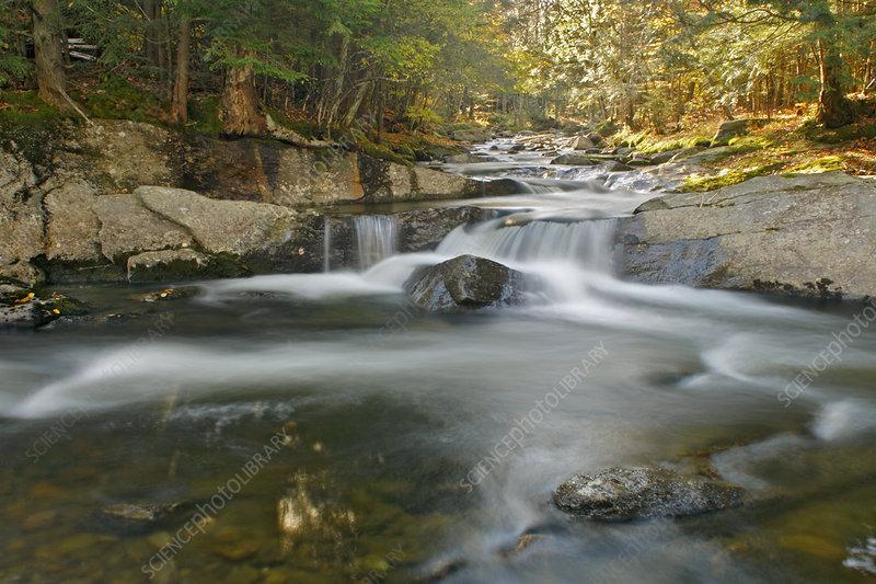 Bog Road Falls, Lamoille River, Vermont