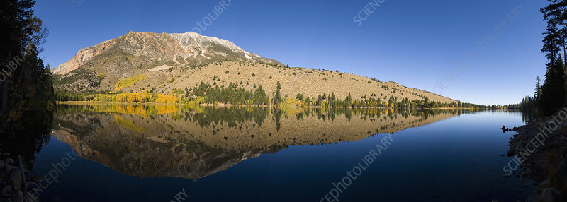 Autumn colors and reflections from Aspens