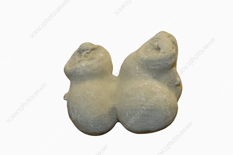 Clay Concretion, Massachusetts, USA