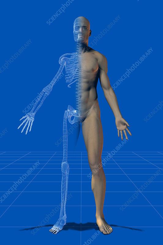 Illustration of medical technology