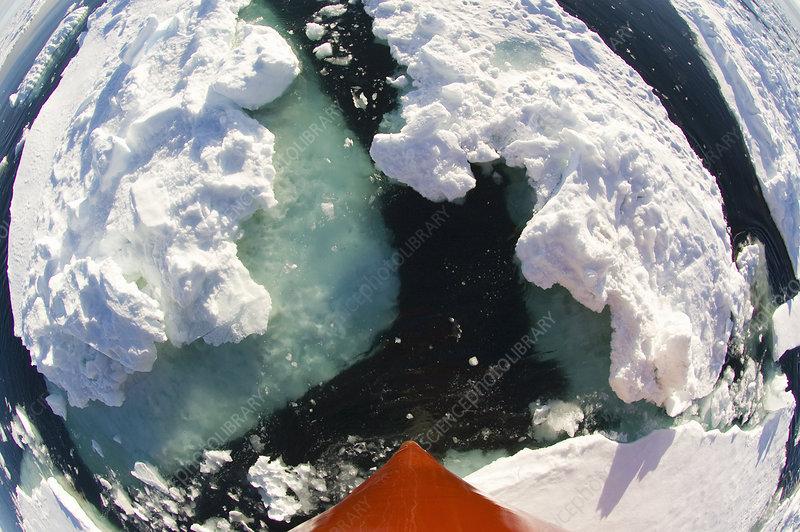 Ship breaking through ice, Antarctica