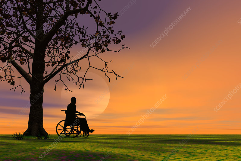 Person outdoors in a wheelchair