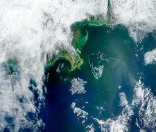 Gulf of Mexico oil spill, 2010