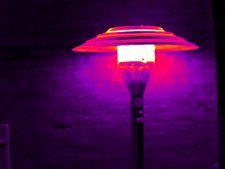 Patio heater, thermogram
