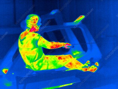 Rowing machine exercise, thermogram