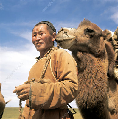 Nomad With Camel