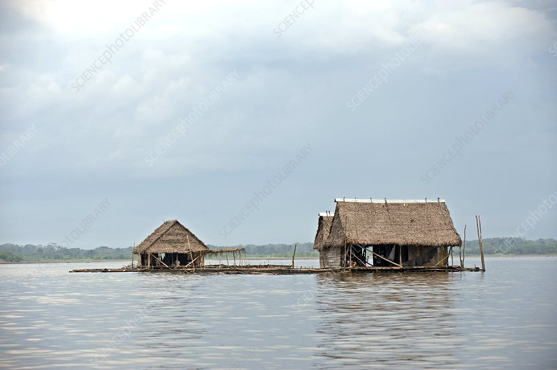 Floating homes, Amazon Basin