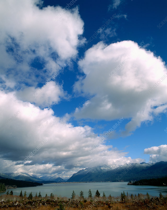 Clouds Over Lake Quinault