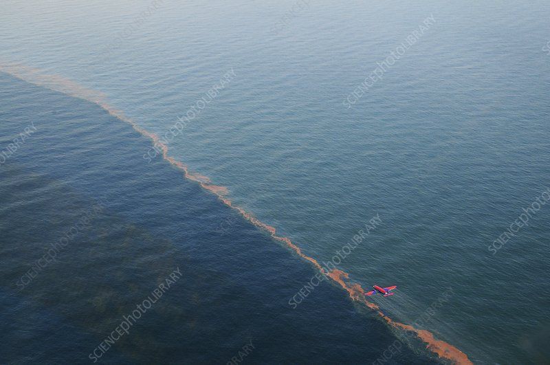 Gulf of Mexico oil spill dispersal, 2010