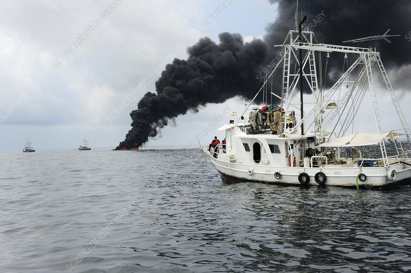 Gulf of Mexico oil spill response, 2010