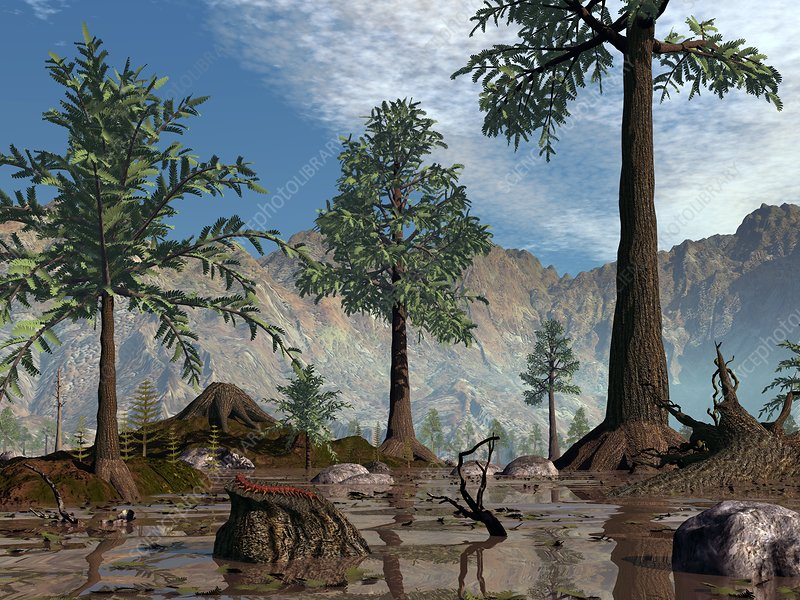 Prehistoric trees, artwork