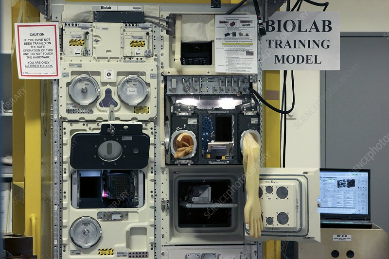 ISS Biolab training station