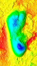 Hominid footprint, 3D optical laser scan