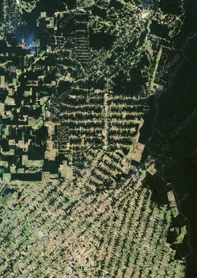 Deforestation in the Amazon, 2001