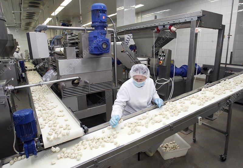 Meat production plant