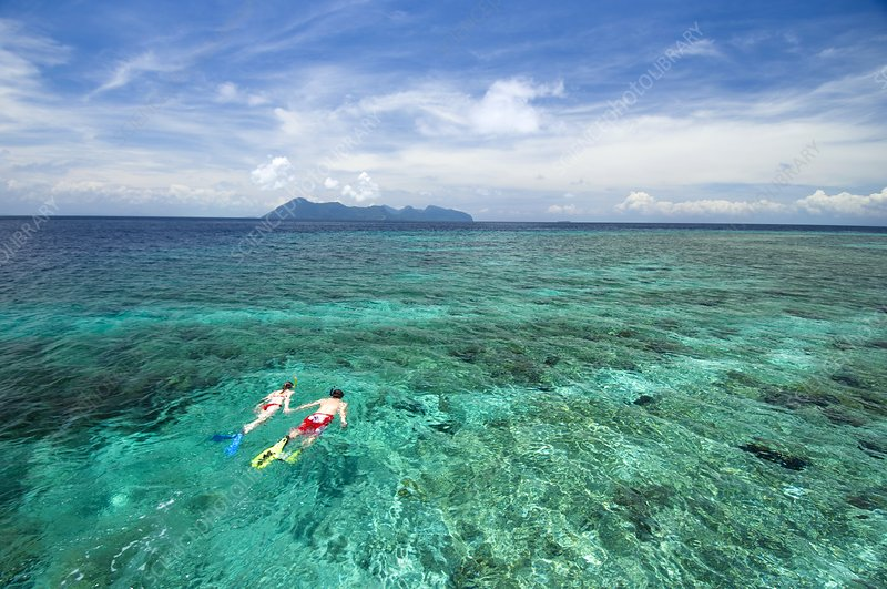 Couple snorkelling over a reef