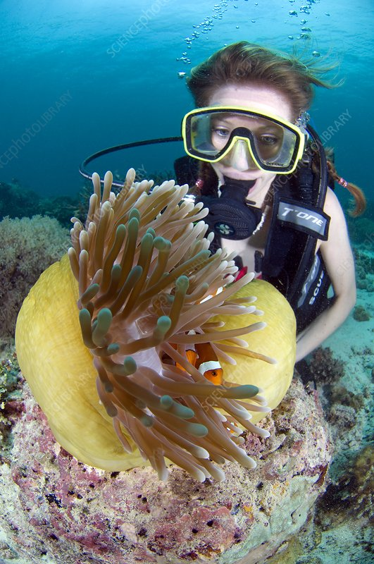 Woman diving with anemone fish