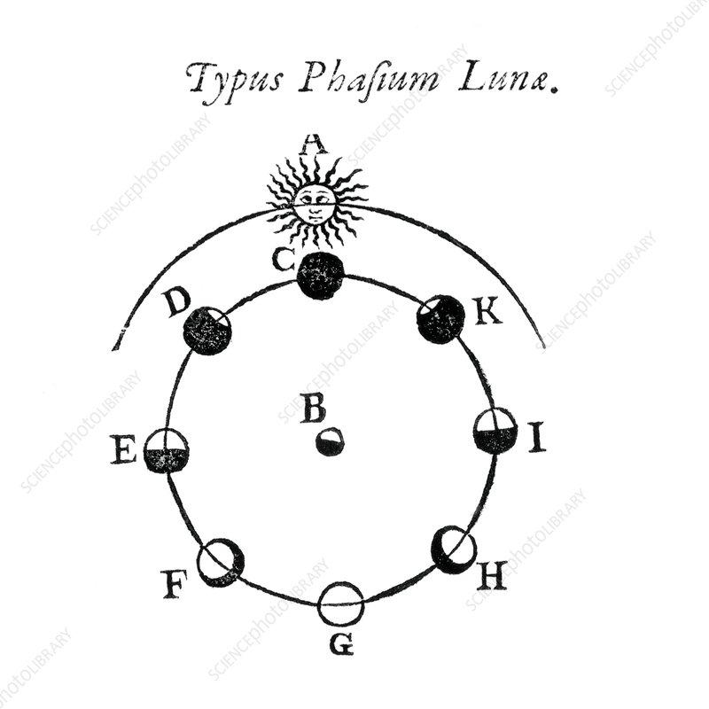 Brilliant Lunar Phases Diagram 1659 Stock Image C007 2232 Science Photo Wiring Digital Resources Instshebarightsorg